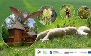 Baner informacyjny projektu pn. ,,Ochrona zagrożonych gatunków i siedlisk chronionych w ramach sieci Natura 2000 w Małopolsce